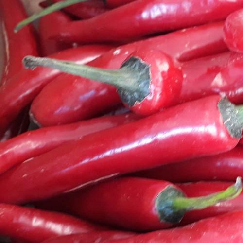 Chilli Red - 20g