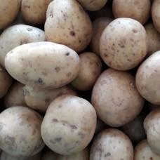 Potatoes - 100g