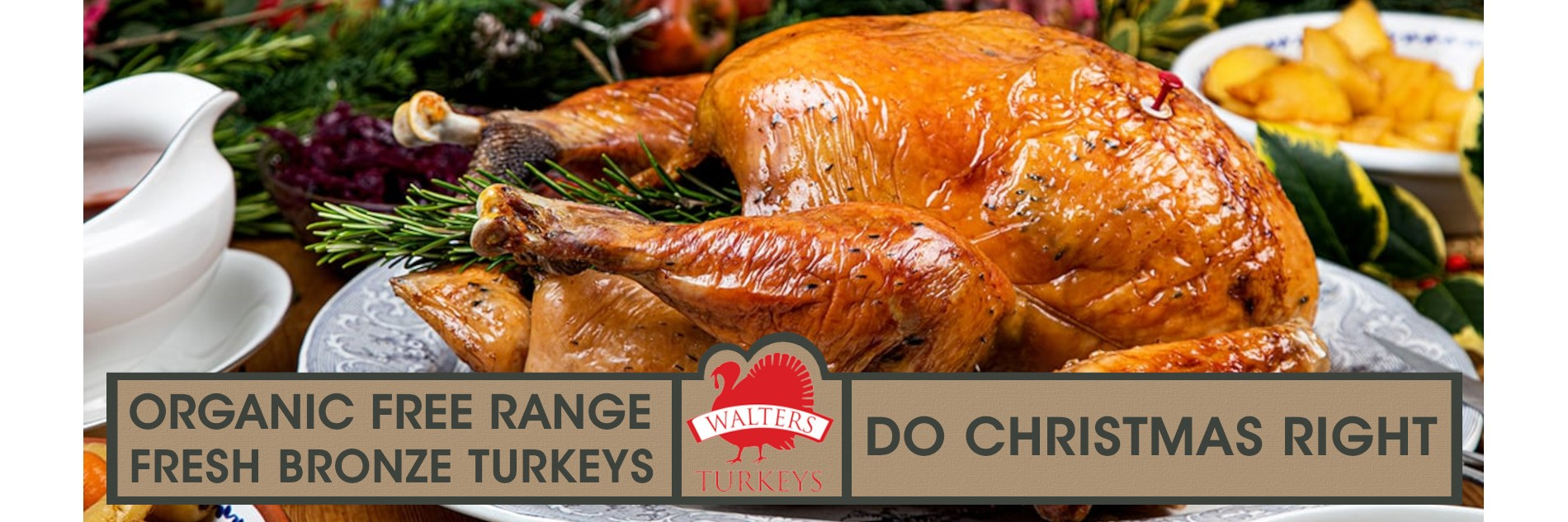 Organic Free Range Christmas Turkeys from Walters Turkeys